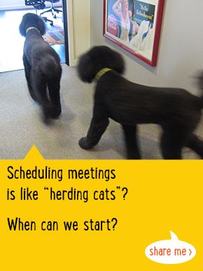 Scheduling meetings is like 'herding cats'? When can we start?