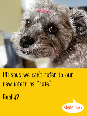 HR says we can't refer to our new intern as 'cute'. Really?