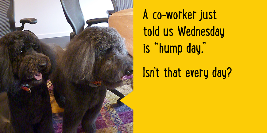 A co-worker justtold us Wednesday is 'hump day.' Isn't that every day?