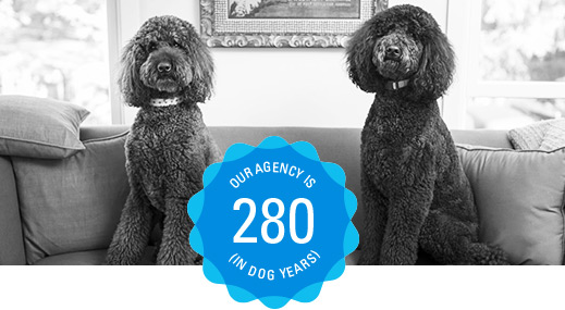 Our agency is 280 (in dog years)